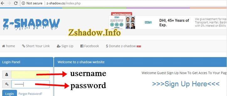Z Shadow Sign in Page